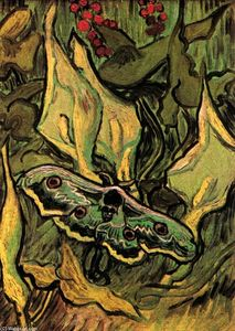 Vincent Van Gogh - Grand-Paon Moth